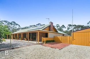 Picture of 48 Ranters Gully Road, Muckleford VIC 3451