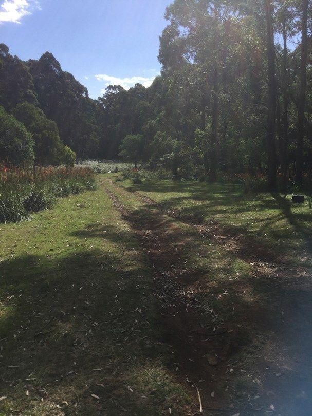 62 Mount Darragh Road, Wyndham NSW 2550, Image 1