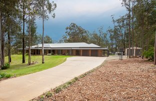 Picture of 12 Thornbill Grove, Thornton NSW 2322