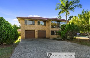 Picture of 43 Cupania St, Algester QLD 4115