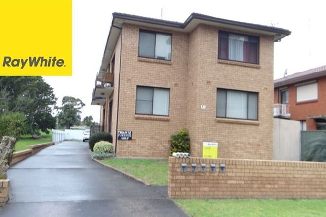Picture of 4/33 Carlotta Crescent, WARRAWONG NSW 2502
