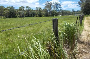 Picture of 366 Skyring Creek Road, Belli Park QLD 4562