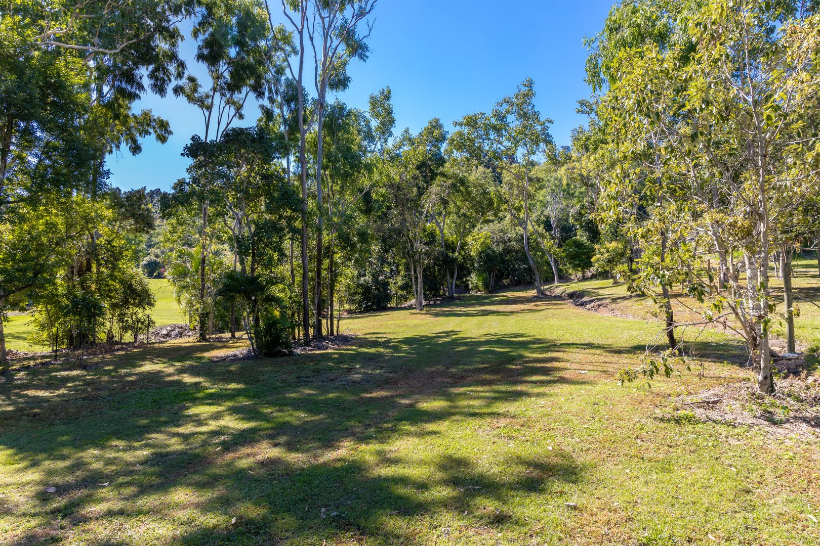 184 Tucker Road, Riordanvale QLD 4800, Image 2