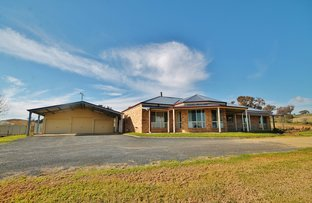 Picture of 39 Burrows Road, Young NSW 2594
