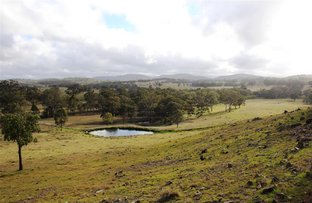 Picture of 692 & 712 Billirimba Road, Tenterfield NSW 2372