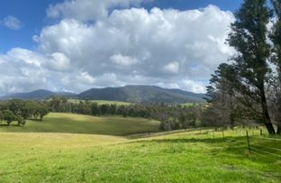 Picture of 208 Upper Brogo Road,, Verona NSW 2550