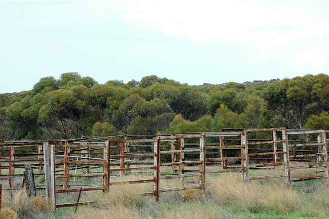 Picture of 1225 Pygery-Port Kenny Road, MOUNT COOPER SA 5671
