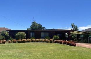 Picture of 14 Bridget Street, Finley NSW 2713