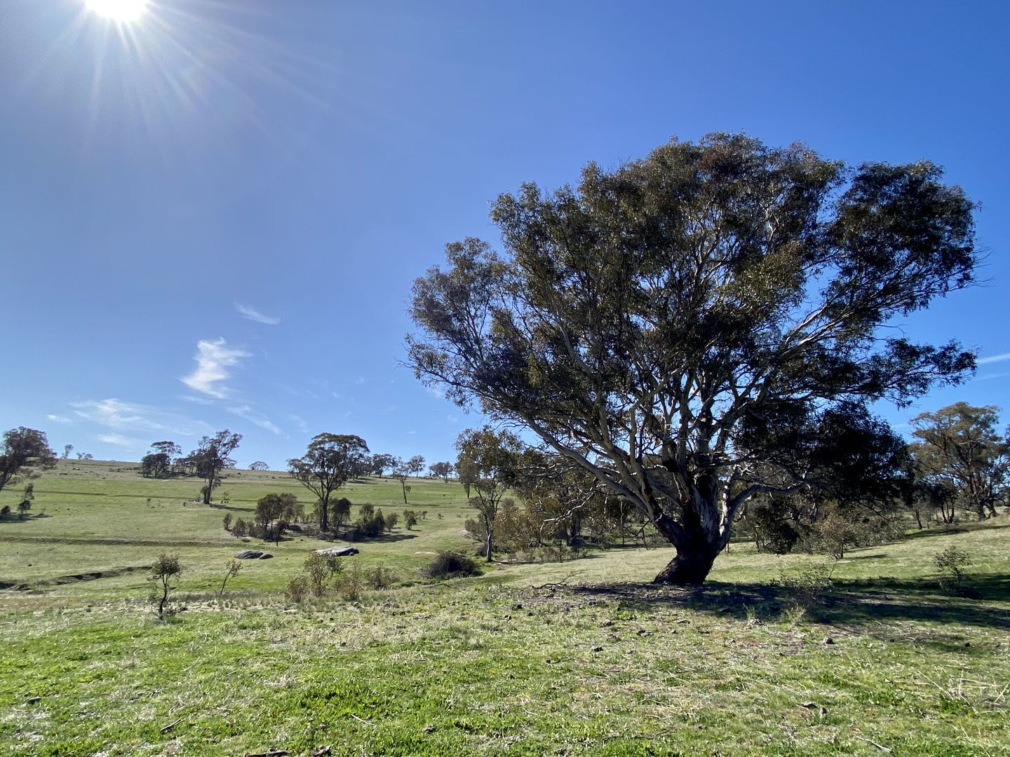 Lot 132, 1488 Mutton Falls Road, O'Connell NSW 2795, Image 0