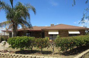Picture of 20 Dewhurst Street, Tamworth NSW 2340