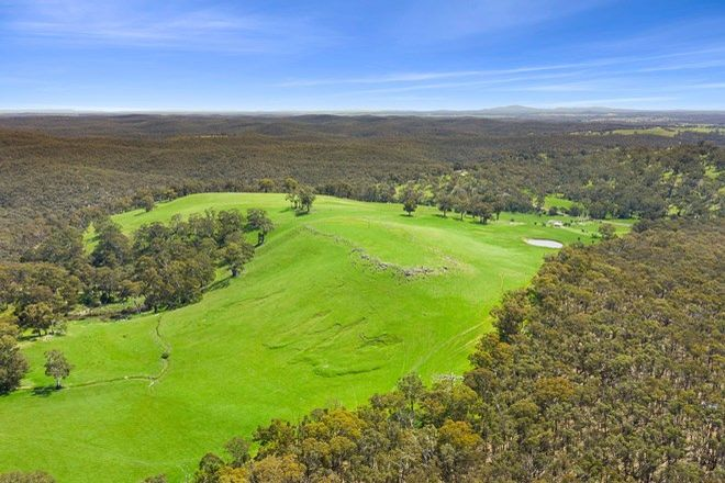Picture of 790 Vaughan Springs Road, GLENLYON VIC 3461