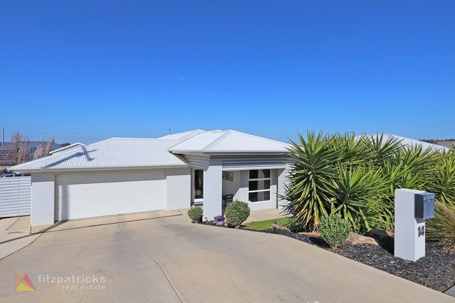 Picture of 14 Gibson Street, BOOROOMA NSW 2650