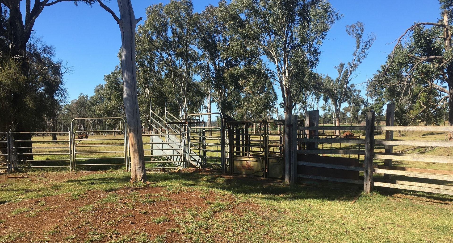 Bellbird Road, Kingaroy QLD 4610, Image 0