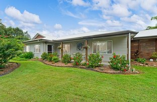Picture of 2 Fagans Crescent, Kendall NSW 2439