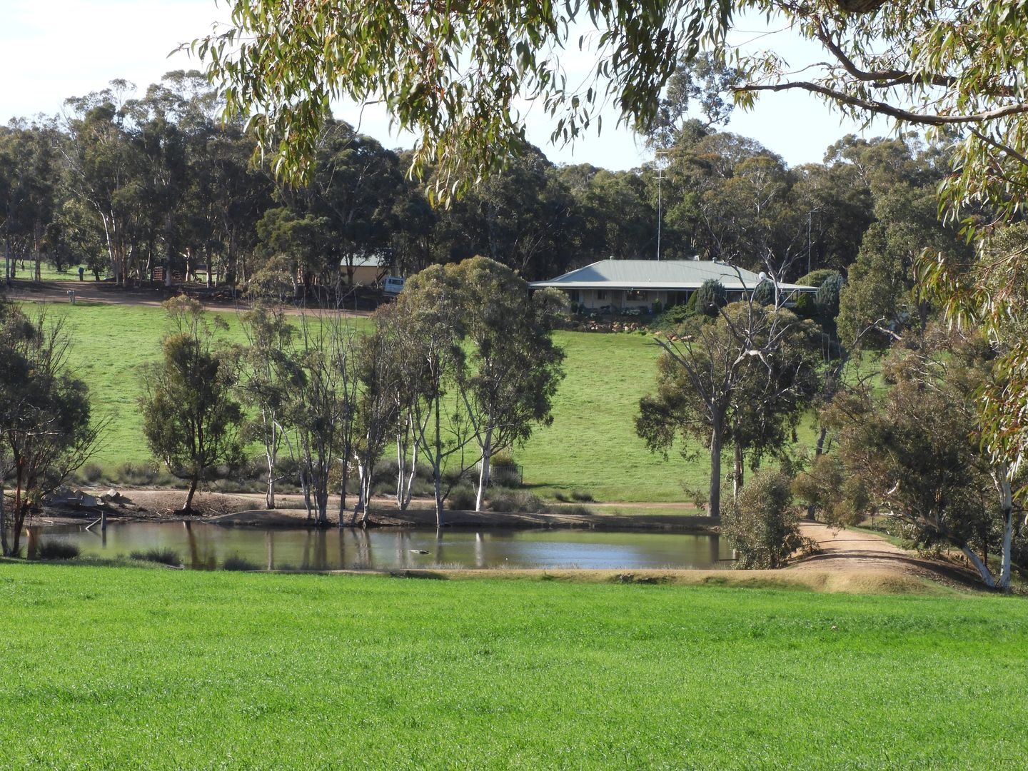 Braysey, 910 Berry Brow Rd, Bakers Hill WA 6562, Image 0
