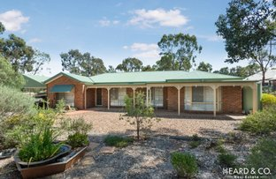 Picture of 16 Clay Gully Court, Maiden Gully VIC 3551