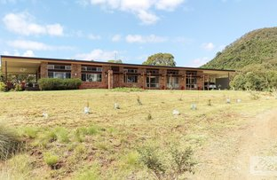 Picture of 261 Coopers Gully Road, Yangan QLD 4371