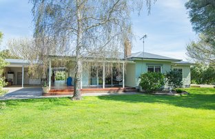 Picture of 4003 Hamilton-Port Fairy Rd,, Macarthur VIC 3286