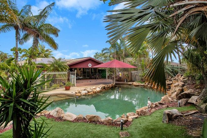 Picture of 43 Annie Wood Ave, MOUNT PLEASANT QLD 4740