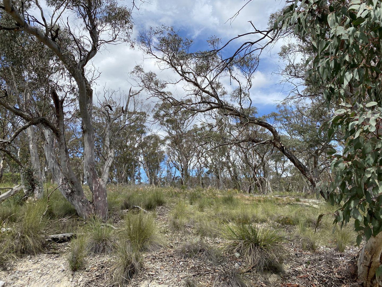 1 & 2 Castlereagh Highway, Marrangaroo NSW 2790, Image 2