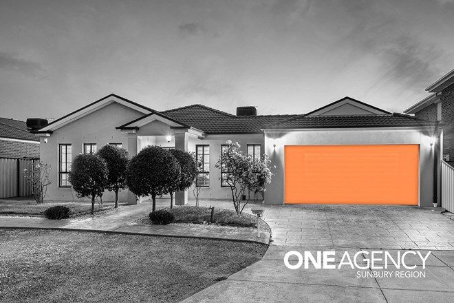 Picture of 19 Edward Court, TAYLORS HILL VIC 3037