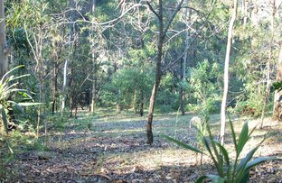 Picture of 5 Orchis Drive, Tamborine Mountain QLD 4272