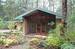 Picture of 149 Lorne Road, Upsalls Creek NSW 2439