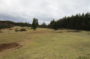Picture of - Kop Road, Erriba TAS 7310
