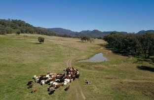 Picture of ' Flaggy Valley', Timor Road, Coonabarabran NSW 2357