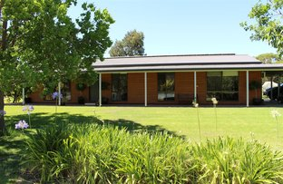 Picture of 121 Hillier Road, Mundulla SA 5270
