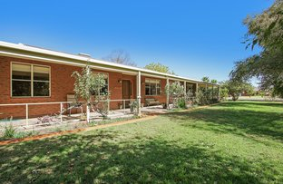 Picture of 82-84 Pell Street, Howlong NSW 2643