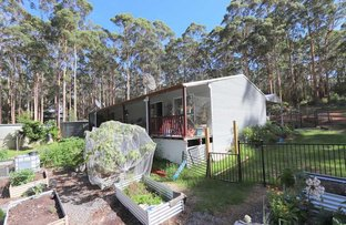 Picture of 35 Karri Dr, Denmark WA 6333