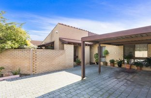 Picture of 2/11 Sprigg Place, Booragoon WA 6154