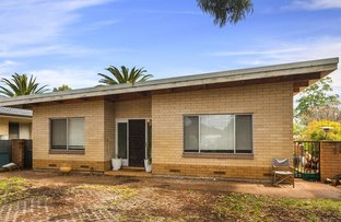 Picture of 17 Carnegie Cres, Netley SA 5037