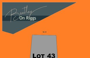 Picture of Lot 43 Stage 1 Bentley on Riggs, Evanston Park SA 5116