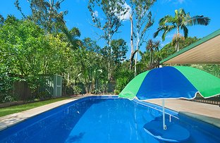 66 Dunning Street, Palmwoods QLD 4555