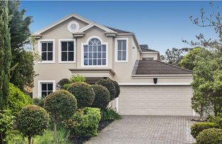 Picture of 51A Thorngate Drive, Belair SA 5052