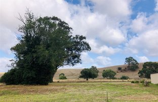 Picture of Lot 1 Portland - Casterton Road, Sandford VIC 3312
