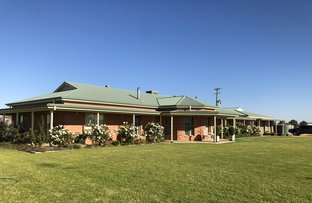 Picture of 218 Wongajong Rd, Forbes NSW 2871