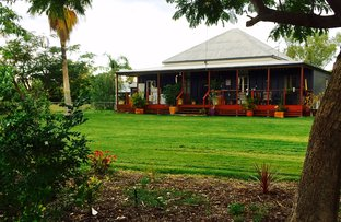 Picture of 65 Yew Street, Barcaldine QLD 4725