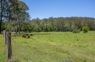 Picture of 336 Cedar Creek Road, Belli Park QLD 4562