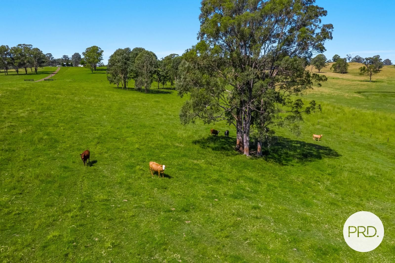 75 Busbys Flat Road, Leeville NSW 2470, Image 1