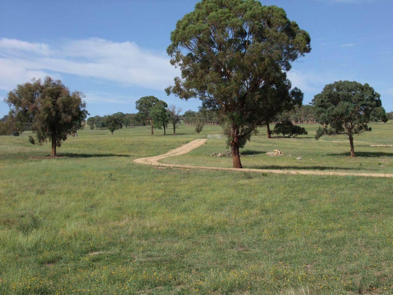 2044 Lagoon Road, Bathurst NSW 2795, Image 2