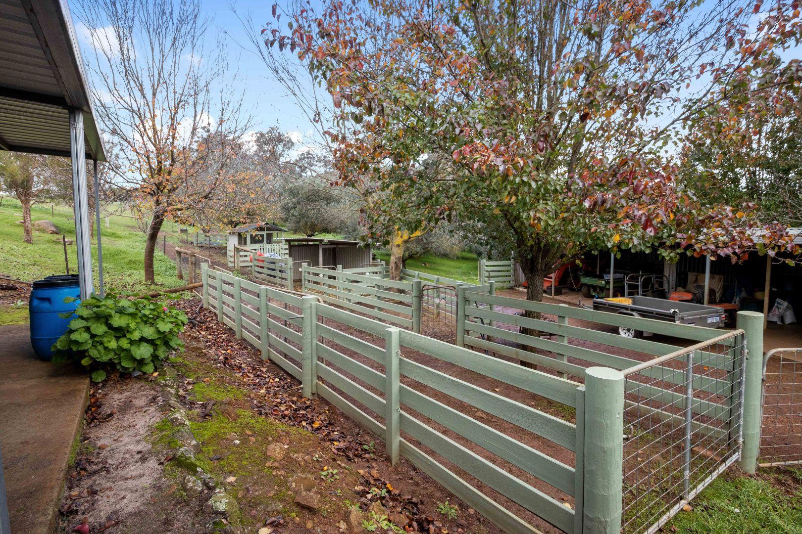 142 Tweed Road, Glenlynn WA 6256, Image 2
