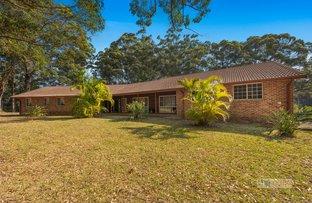 Picture of 9 Elk Avenue, Repton NSW 2454