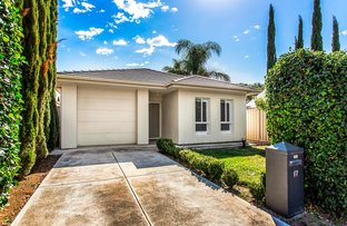 Picture of 17 Emerald Street, Edwardstown SA 5039