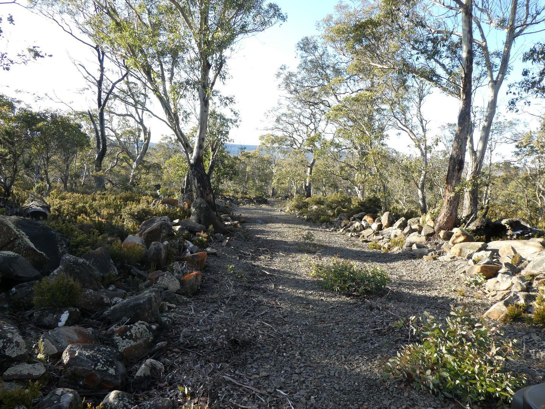 223 Barren Plains Road, Miena TAS 7030, Image 2