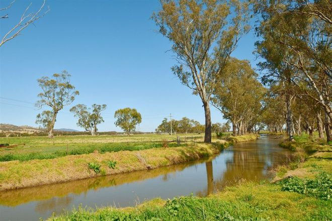 Picture of 'St Aubins Without' 2335 New England Hwy, SCONE NSW 2337
