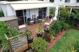Picture of 7/45 Old Coast Road, Nambucca Heads NSW 2448