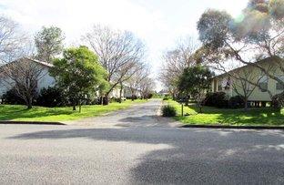 22 Mount Street, Scone NSW 2337